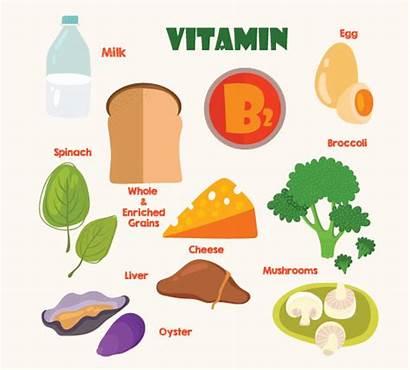 Vitamin B2 Foods Rich Clipart Pregnancy Pregnant