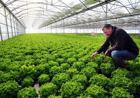 chambre d agriculture aude après le gel les calamités 22 02 2012 ladepeche fr