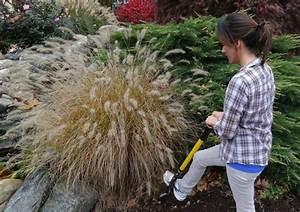 Gräser Im Garten : 1000 images about garten gr ser auf pinterest ~ Lizthompson.info Haus und Dekorationen