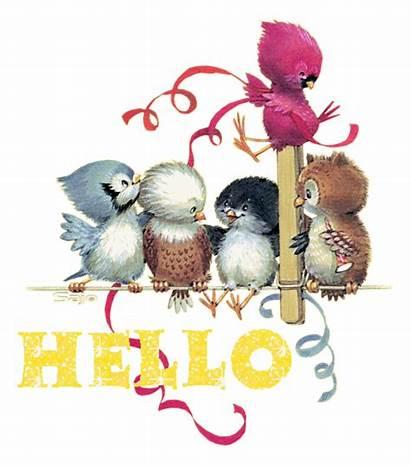 Hello Oiseaux Gifs Plaatjes Blinkies Bonjour Animaatjes