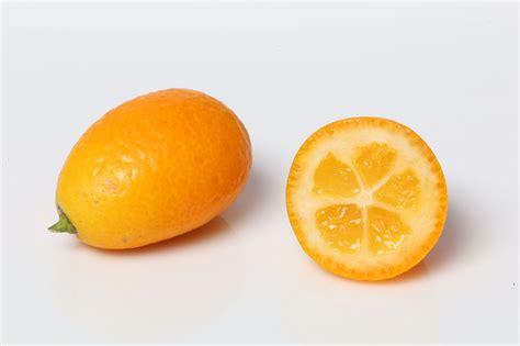 Kumquat Images File Kumquat Geschlossen Offen Jpg Wikimedia Commons
