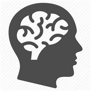 Brain, education, human head, man, mind, psychology ...