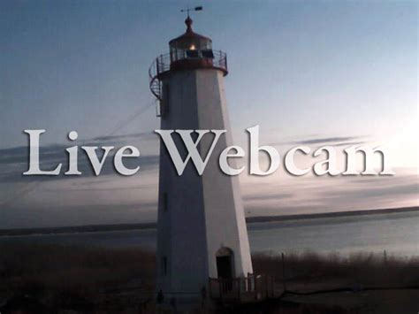 Live Web by Live From Faulkner S Island