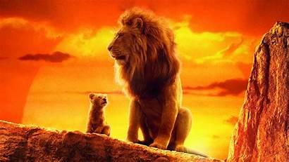 Lion King 4k Simba Mufasa Wallpapers 1600
