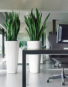 Products  Modern Planters
