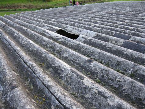 asbestos   home asbestos removalists survey