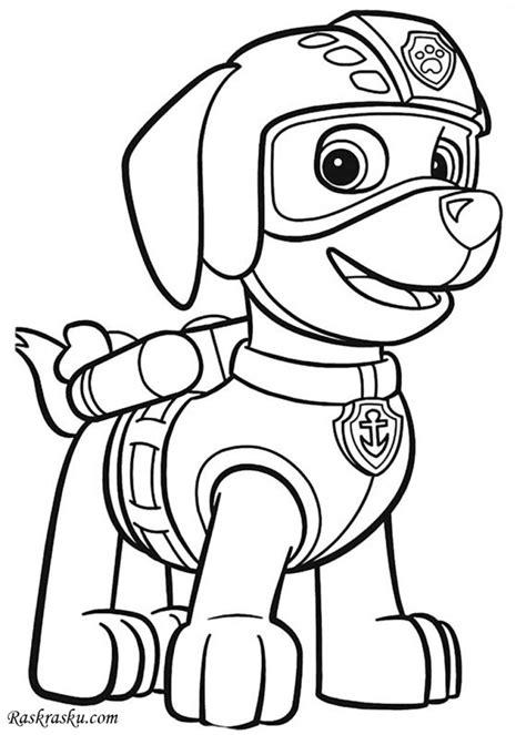 dibujos  colorear de paw patrol zuma