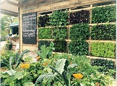 Sustainable gardening vertical growing Stories GOAL