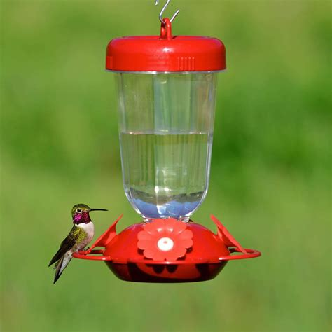 hummingbird feeder perky pet 135tf perky s finest red flower top fill plastic hummingbird feeder