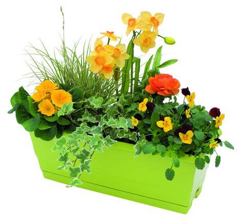 Idée Jardiniere  Jardinière De Fleurs Printanières