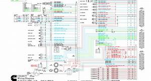 M11 Celect Plus Wiring Diagram
