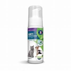 Anti Mousse écologique : anti mousse naturel bicarbonate de soude ~ Edinachiropracticcenter.com Idées de Décoration