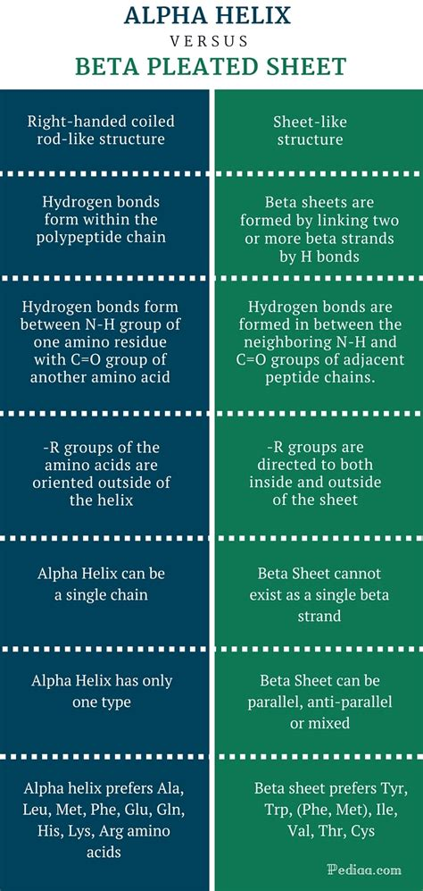 difference between alpha helix and beta sheet difference between alpha helix and beta pleated sheet