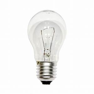 Light Bulb Size Chart  U0026 Series Guide