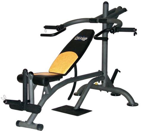 Buy Special Sporting Goods  Body Champ Lb2600 Deluxe