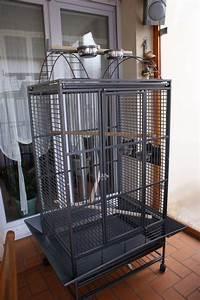 Cage A Perroquet : cage perroquet pas cher ~ Teatrodelosmanantiales.com Idées de Décoration