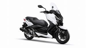 Permis B Moto : formation moto 125 cm3 conduire moto scooter avec permis b ~ Maxctalentgroup.com Avis de Voitures