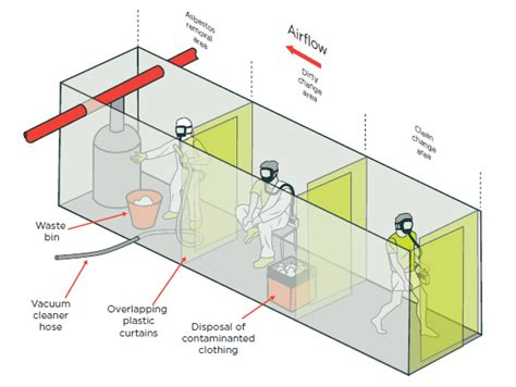 management  removal  asbestos worksafe