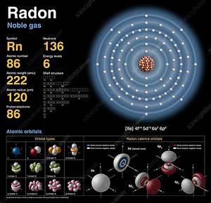 Radon  Atomic Structure - Stock Image C018  3767