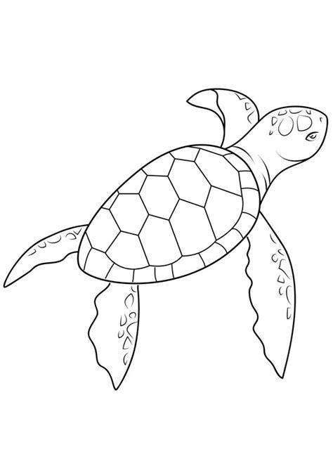 disegni da colorare e stare gratis per bambini colorare disegni per bambini html autos weblog