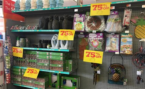 75% Off Summer Clearance At Family Dollar!  The Krazy