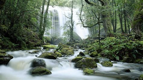 Jerusalem River Waterfalls Tasmania Australia © Ted