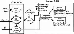 Angular Component Life Cycle Diagram Created During Training In Mumbai