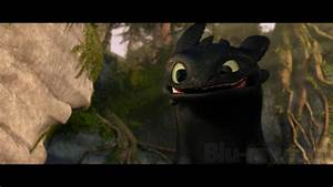 Images Of Cute Toothless Dragon Wallpaper