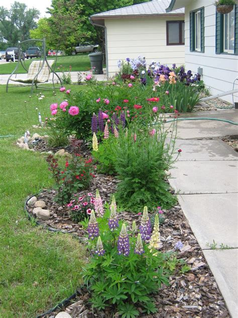 pics   flower beds flowers lawn growing