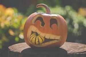 Free, Halloween, Pumpkin, Carving, Stencils