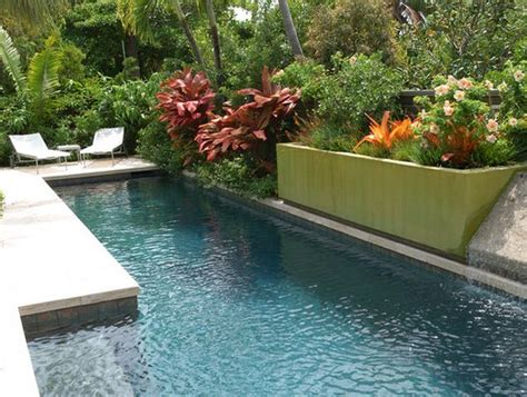 plants for pool area 10 ways to upgrade your poolside area this summer