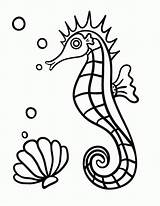 Coloring Seahorse Printable Pages Horse Print Coloringcafe Colouring Pdf Sheet Drawing Sheets Everfreecoloring Seahorses Printables Templates Animal Getdrawings Line Fish sketch template
