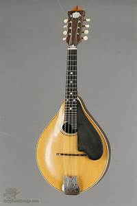 689 best music (string) instruments images on Pinterest ...