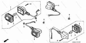 Honda Scooter 2005 Oem Parts Diagram For Turn Signal