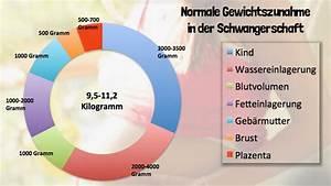 Ssw Mit Geburtstermin Berechnen : gewichtszunahme in der schwangerschaft ~ Themetempest.com Abrechnung