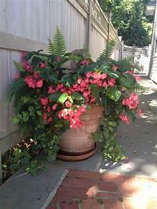 Planters: amazing big flower pot Cheap Big Flower Pots