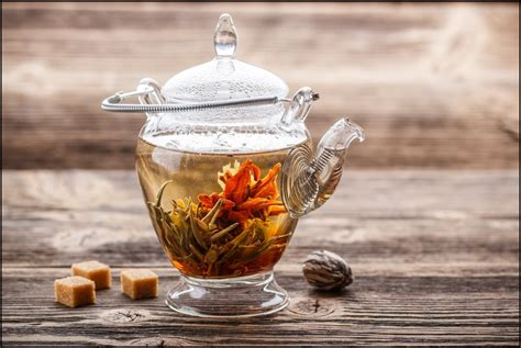 delicious health benefits  blooming tea reasons