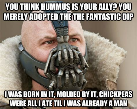 funniest hummus pictures  images