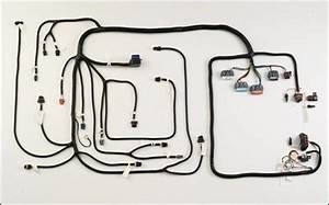 Wiring Harness Gm Vortec 1996 4l60e Or