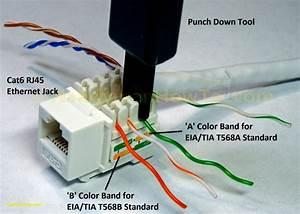 X 31 Phone Jack Wiring - Wiring Diagram Detailed