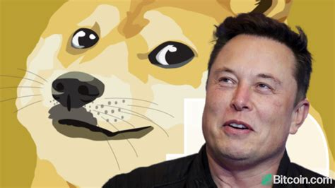 Elon Musk Urges Dogecoin Whales to Dump Their Coins — Even ...