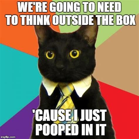 Funny Poop Memes - business cat memes imgflip
