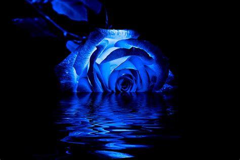 blue photograph by doug