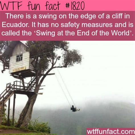 Swing Facts by The Scariest Swing Facts