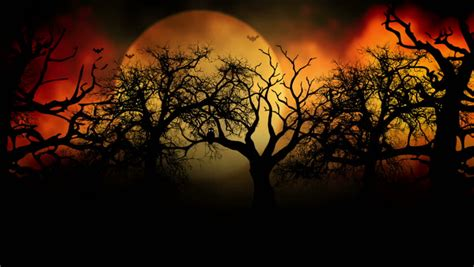 Fall Backgrounds Spooky by Animated Stylish Background Useful For Spooky