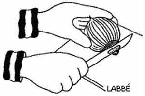 Zwiebel Schneiden Gerät : kochen zwiebel schneiden zzzebra das web magazin f r kinder labb verlag ~ Orissabook.com Haus und Dekorationen