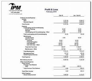 realtor profit and loss statement