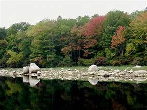 Sources Of Sodium And Chloride In The Scituate Reservoir