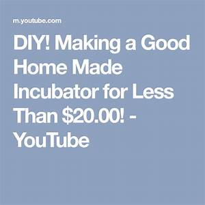 Diy  Making A Good Home Made Incubator For Less Than  20