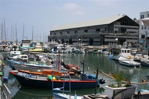 port d israel en 5 lettres jaffa port israel middle east on tripadvisor address phone number of water reviews